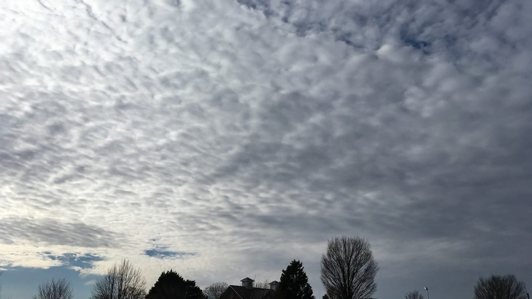 A photograph of altocumulus stratiformis clouds (Ac str) in the afternoon