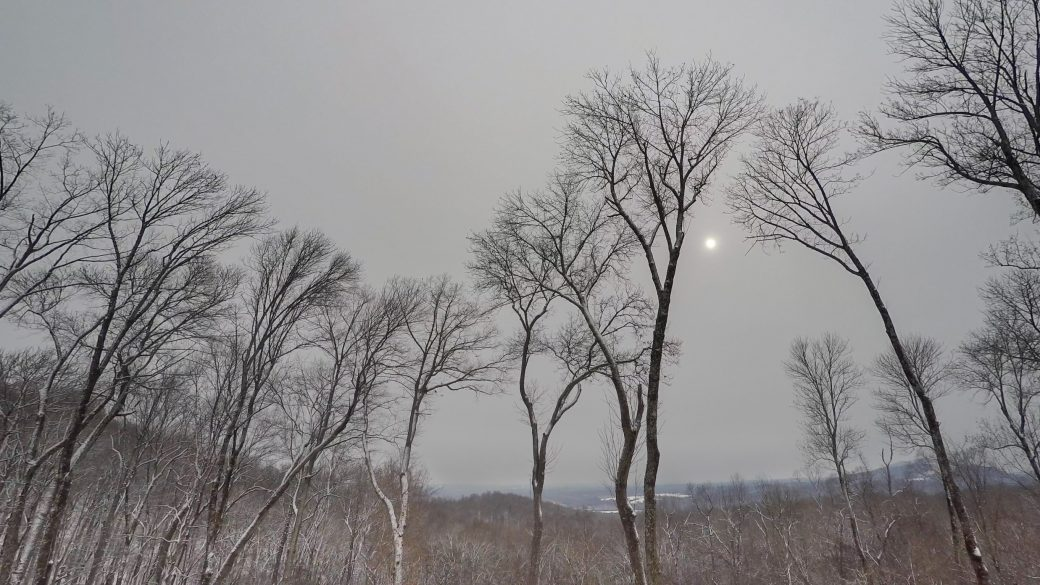 A photograph of altostratus translucidus clouds (As tr) over a snowy landscape