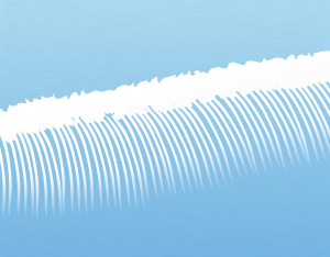 A graphical illustration of a cirrus homomutatus cloud