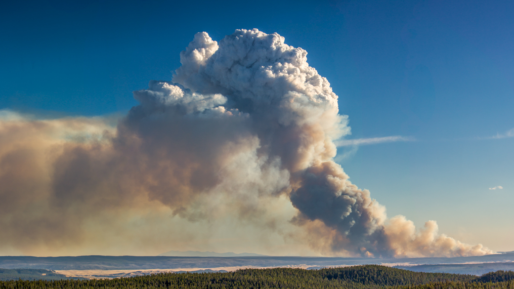 A photograph of a cumulus congestus flammagenitus cloud (Cu con flgen) over a forest landscape