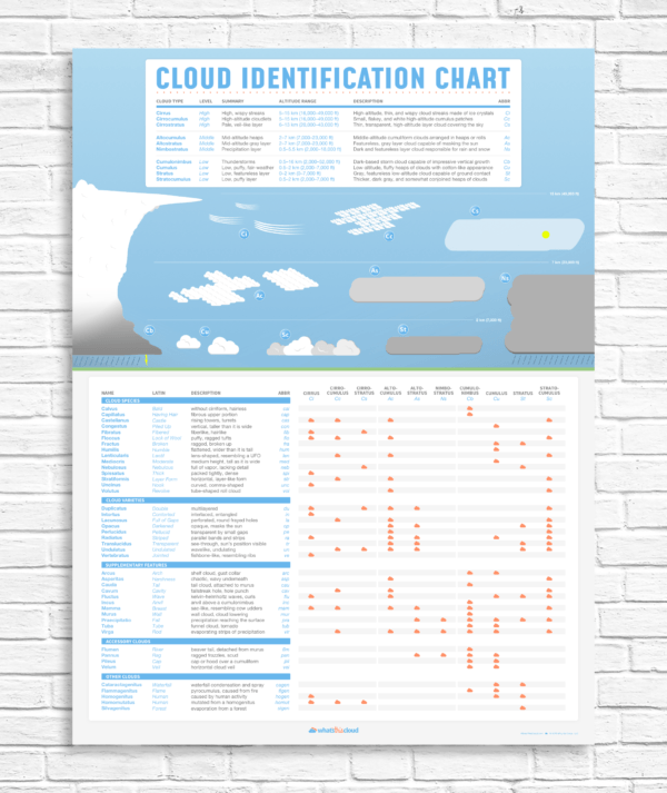 Cloud identification poster